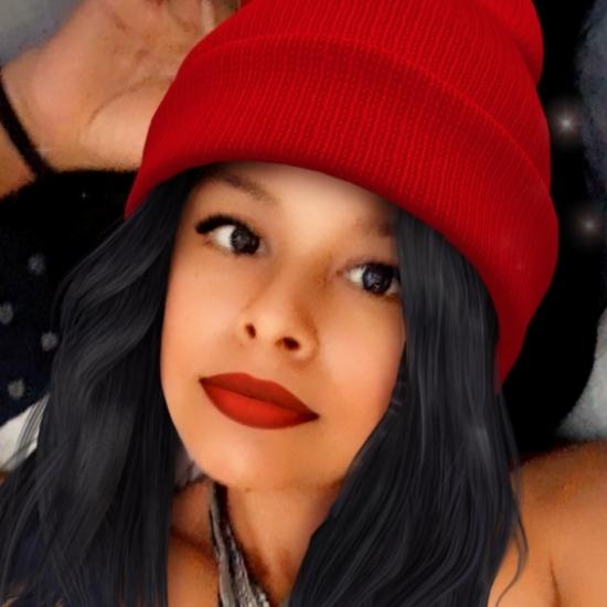 Blogger    Priscila salinas  - Student.