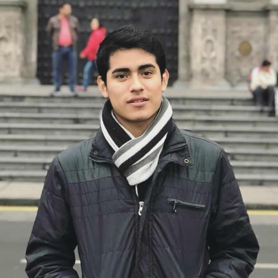 Blogger   Elvis  Espinoza  - Estudiante.