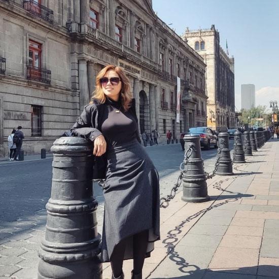Blogger     Mirelez Zelerim - Desarrollo de negocios.