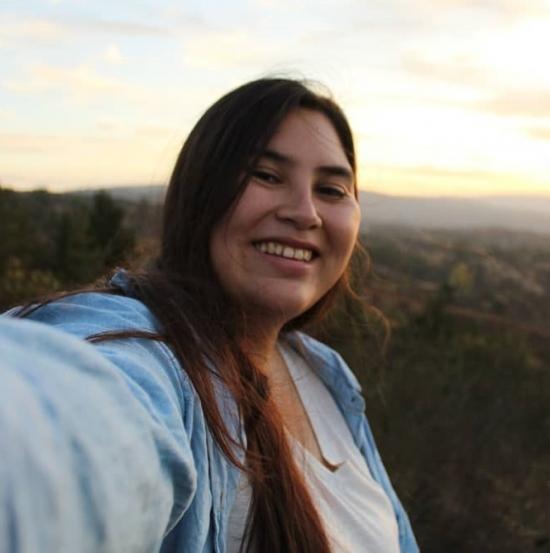 Blogger     Cecilia Barrios - Estudiante.