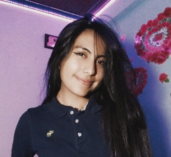 博客     Sally Sanchez - Language student.