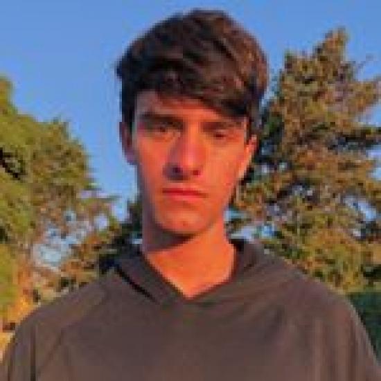 Blogger José Tomás Cifuentes Domínguez - Estudiante.