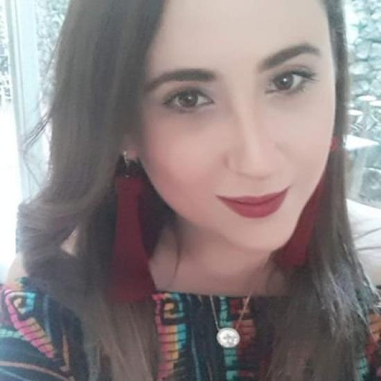 Blogger     Leei Coher - Empresaria.